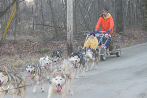 Dog carting is fun with kids