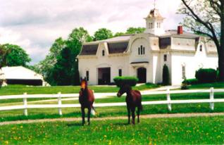 Morgan Horse Farm at the University of Vermont